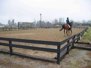 Lighted dressage arena with mirrors