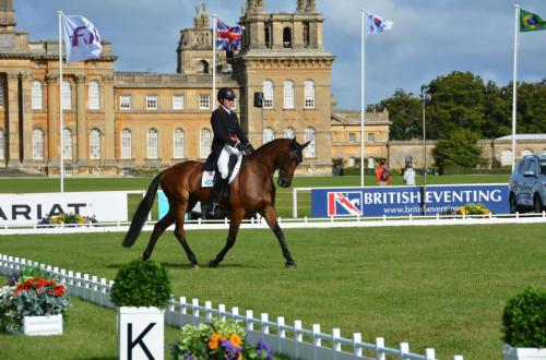 Quinn Blenheim Dressage Courtesy of Richard Payne