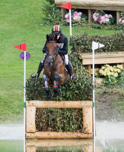 Quinn Blenheim XC 2 Courtesy of Richard Payne
